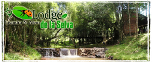 Lodge de la selva 300x123 Lodge de la selva
